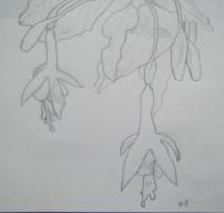 Jour 3 - Fleur